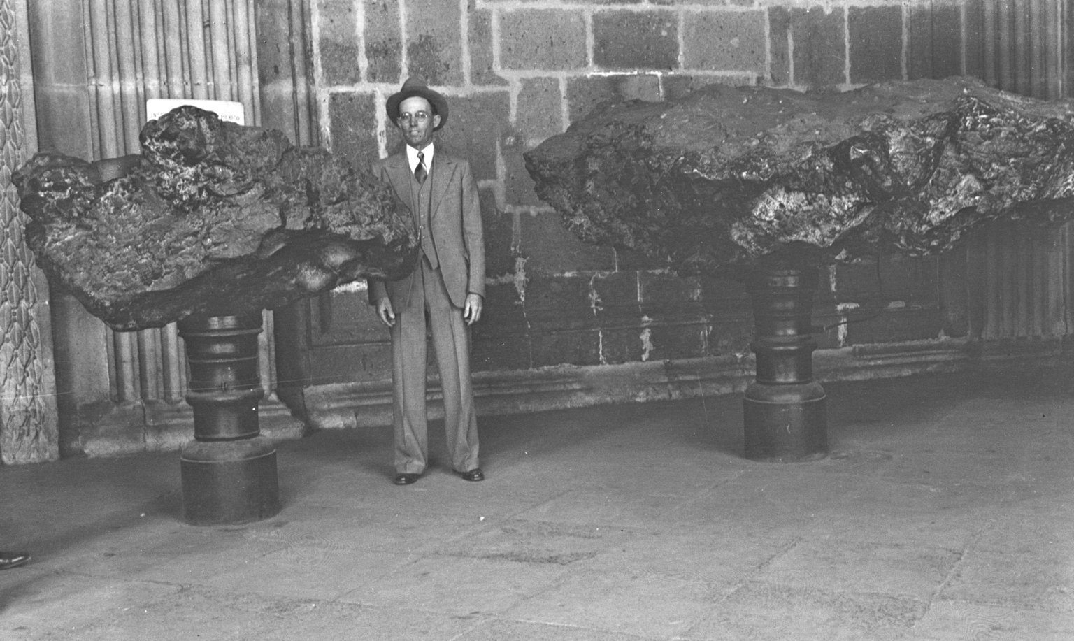 H H with exhibited specimens