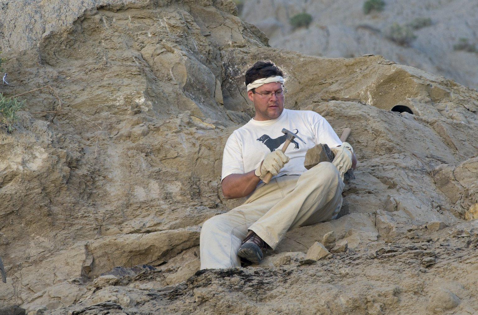 Dr. Kirk Johnson, DMNS Vice President of Research and Collections and Chief Curator, uses a rock hammer to reveal a leaf specimen on the Kaiparowits Plateau.