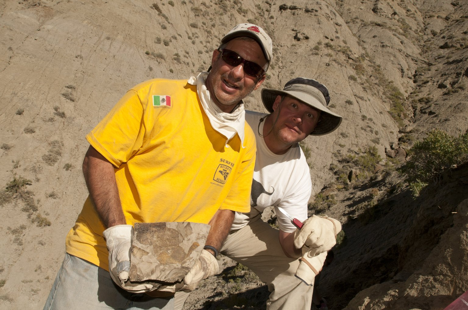 L-R: A DMNS Volunteer holds a rock with leaf specimens after it has been unveiled by Dr. Kirk Johnson holding the knife on the Kaiparowits Plateau.