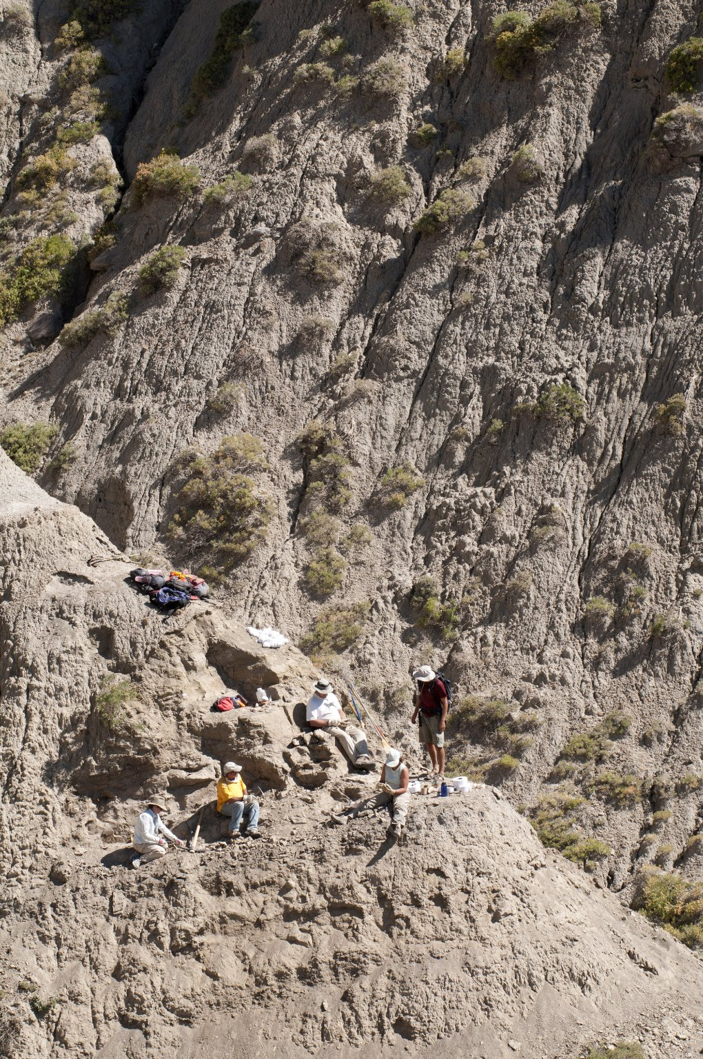 Dr. Kirk Johnson (in white shirt sitting against rock in middle) examines a specimen while DMNS Volunteers look on.