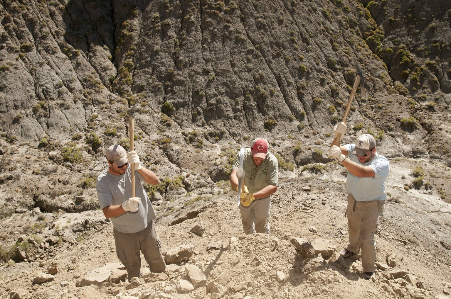 L-R: Dr. Ian Miller, Dane Miller, and David Allen wield picks at an excavation site on the Kaiparowits Plateau.