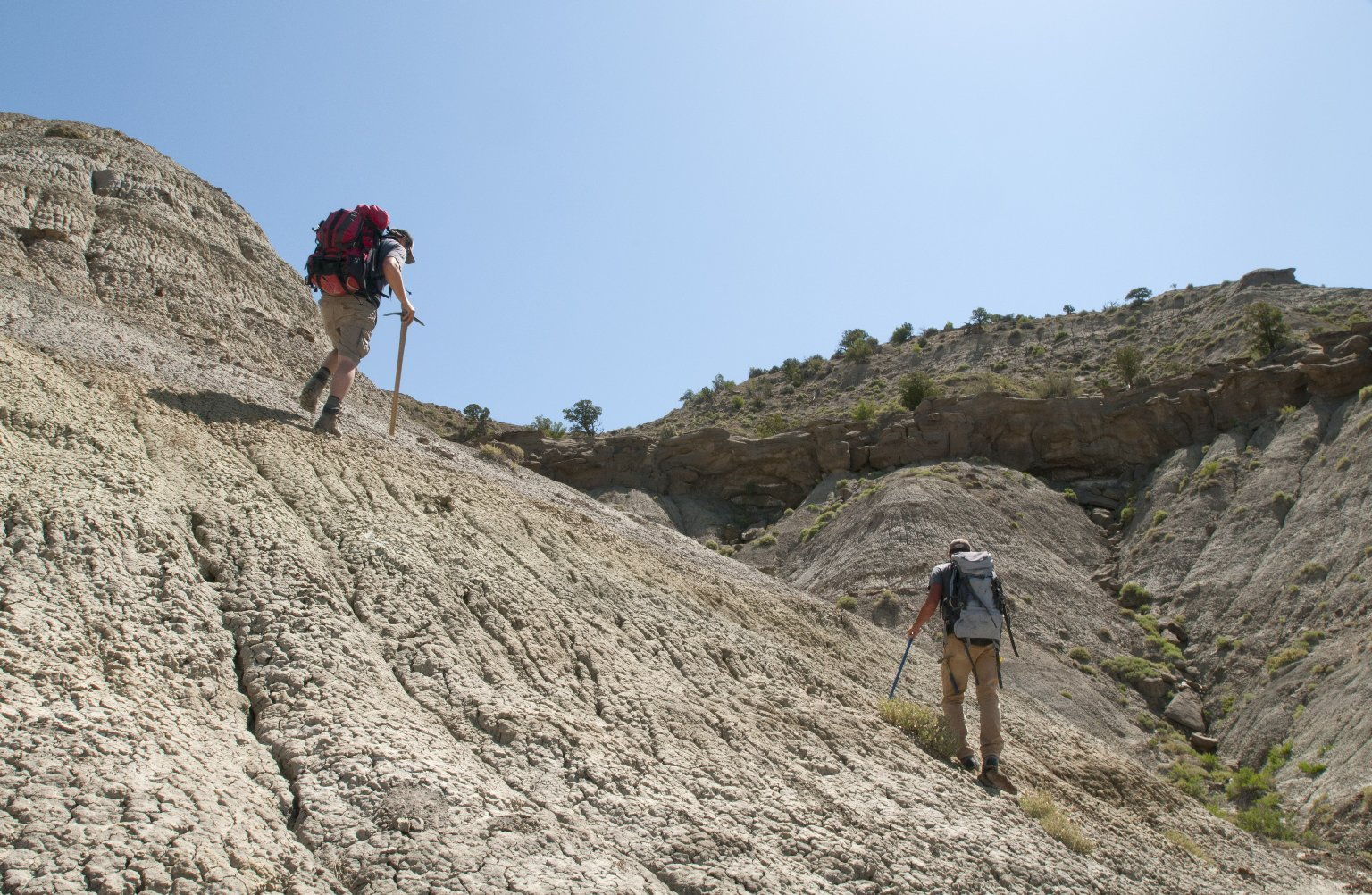 Dr. Ian Miller (L) and Dr. Joseph Sertich(R) prospect for specimens in the Kaiparowits Plateau.