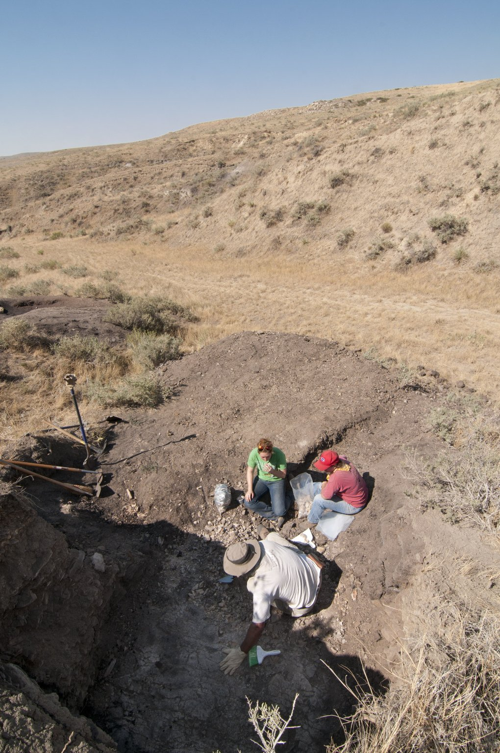 Working a KT Boundary Site with Dr. Kirk Johnson