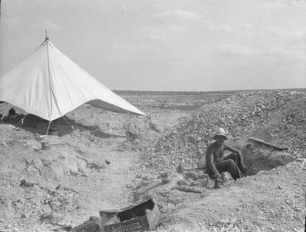 Field worker at unidentified excavation site