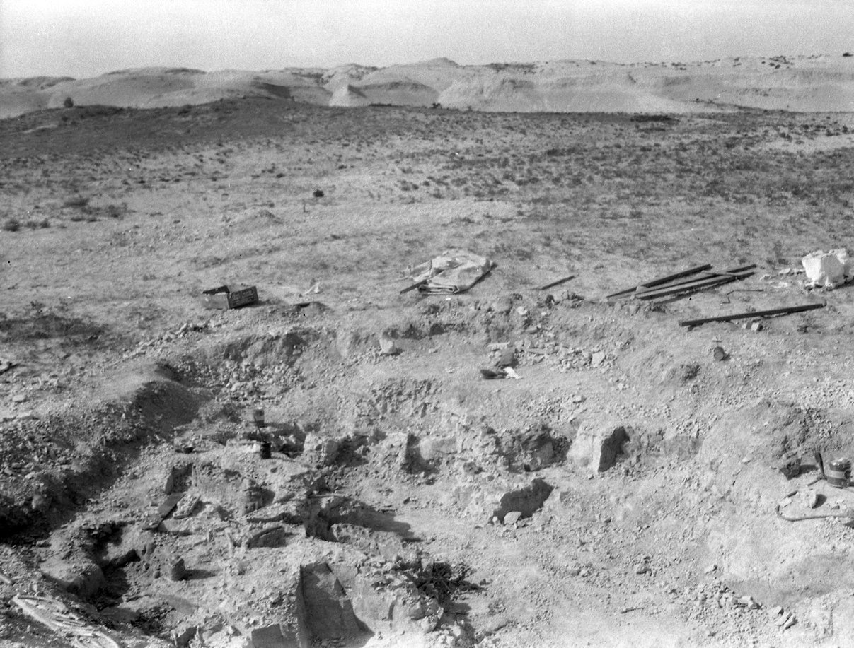 Unidentified dig site