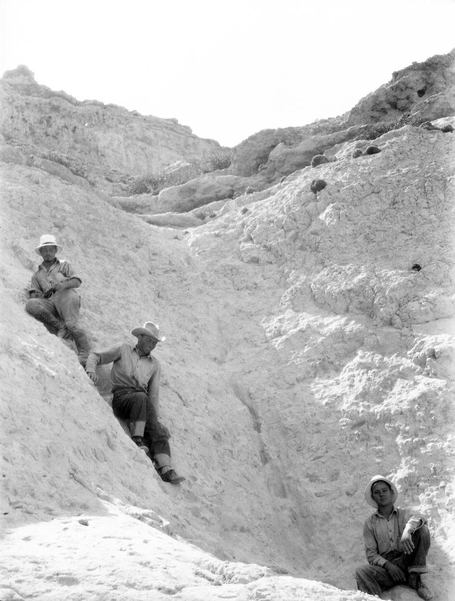 Workers at unidentified dig