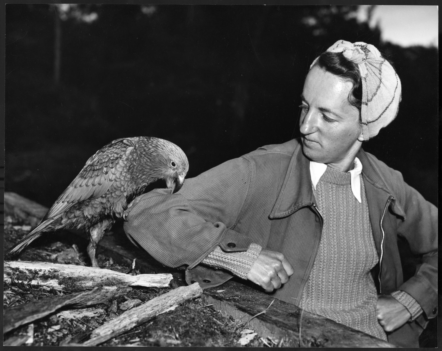 Jean E. Bigwood with Kea
