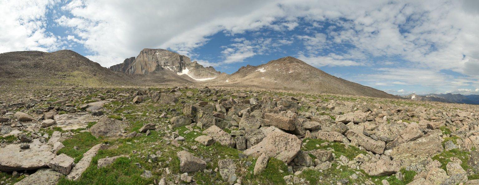 Field Location for the Alpine Tundra Diorama.