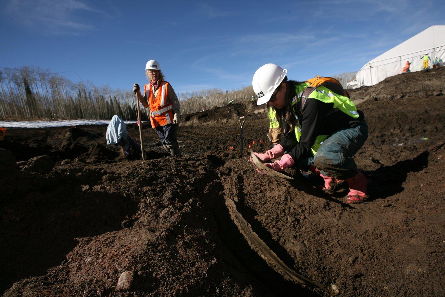 Snowmastodon Excavation