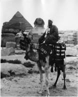 Man on Camel in Egypt