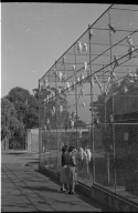 Patricia Bailey Witherspoon at the Melbourne Zoo