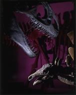 Allosaurus and Stegosaurus