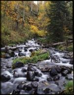 Creek in the Flat Tops Wilderness Area