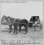 School inspectors in carriage