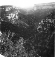 Ruins at Mesa Verde National Park