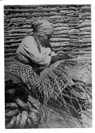 Paiute with winnower