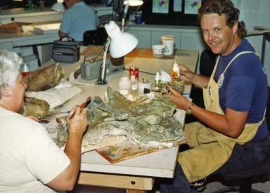 DMNH Paleontology Department Scrapbook