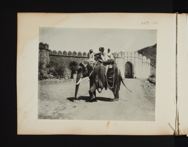 Four men on an elephant.