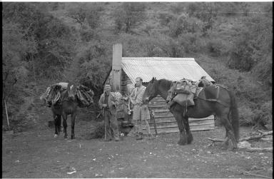 Camp Kiwi