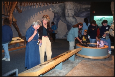 Visitors to Prehistoric Journey exhibit