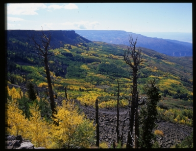 Flat Tops Wilderness Area