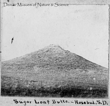 Sugar Loaf Butte