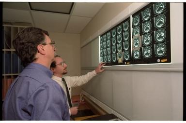 Viewing CT scans of mummified cat