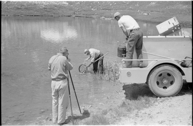 Colorado Parks and Wildlife members restocking a pond at Loveland Pass