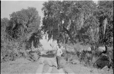 Alfred M. Bailey in Cheniere au Tigre