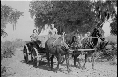 People on a horse drawn wagon