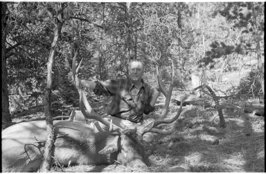 Alfred M. Bailey with an elk
