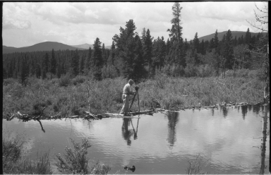 Alfred M. Bailey with Beaver Dam