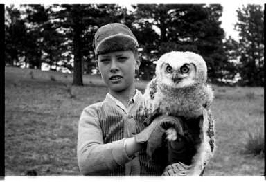Child and Owl