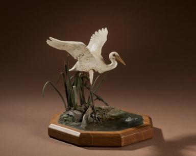 Ibis/Egret