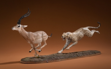 Cheetah and Grant's Gazelle