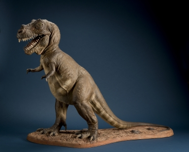 Tyrannosaurus rex or T-Rex