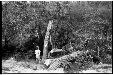 Bob Bailey Witherspoon and Beaver Cutting