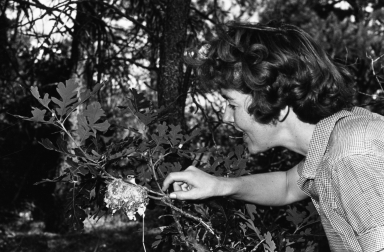 Patricia Bailey Witherspoon with a bird
