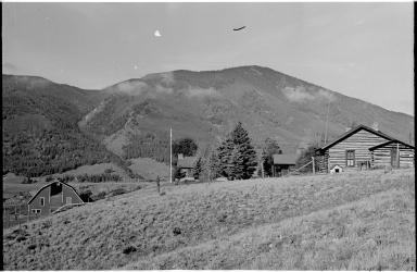 Cattle Ranch Scenery