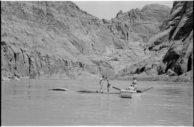 Log rolling on the Colorado River