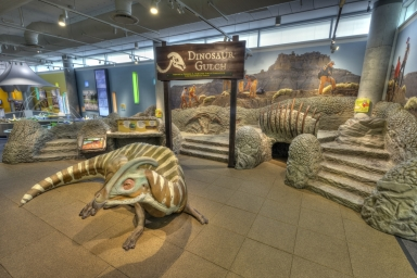 DMNS Discovery Zone