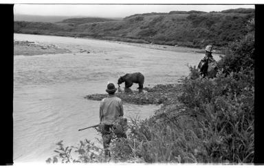 Fishing at McNeil River, Alaska