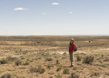 New Mexico fieldwork
