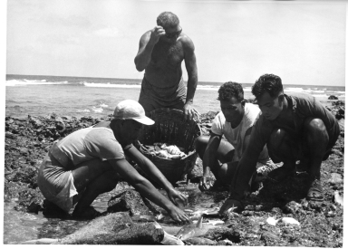Fieldwork in Kiribati
