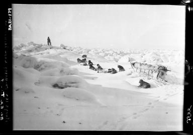 Museum sled rounding Cape Lisbourne in Alaska