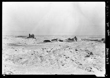 Eskimo men and sled dogs in Wainwright, Alaska