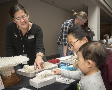 Darwin day event and collection display with Curator of Invertebrate Zoology Paula Cushing