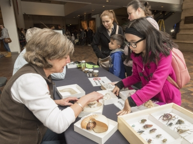 Darwin day event and collection display with Denver Museum of Nature and Science volunteers