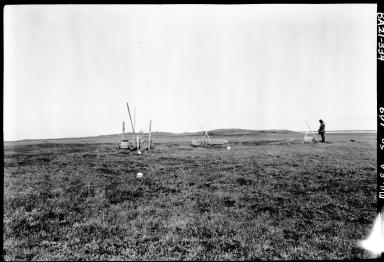Graves along Lopp Lagoon