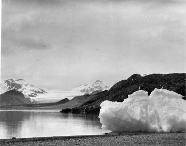 Dead Glacier